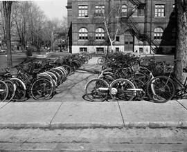 Bicycles at K.C.V.I.
