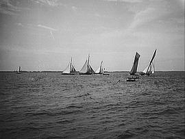 [Six Sailboats and Two Row Boats]