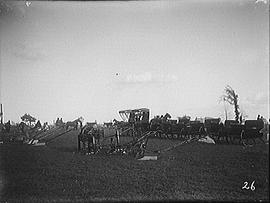 [Horse Drawn Cutters, Ploughs and Carriage Aligned in a Field]